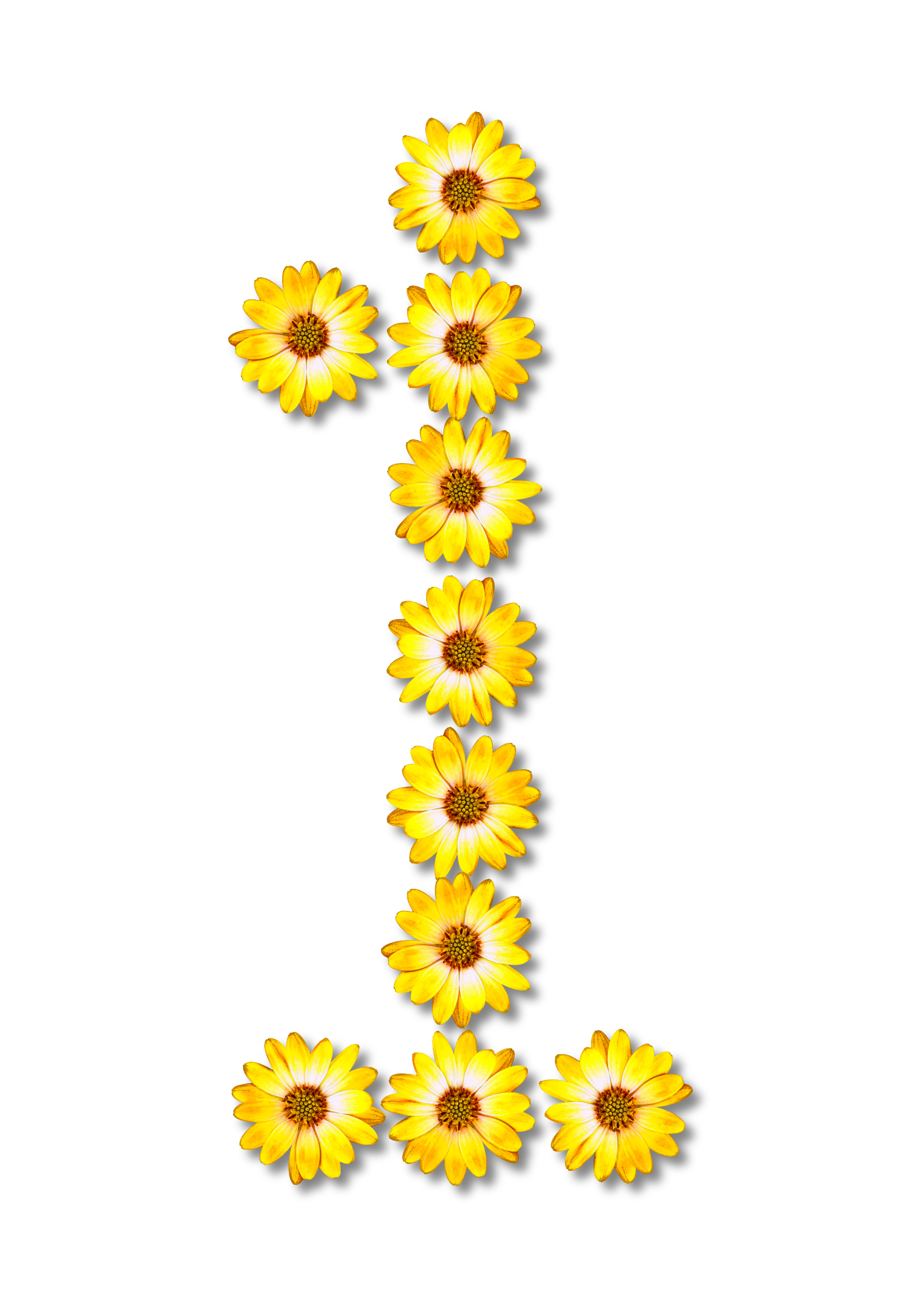 Number 1 clipart floral. Alphabet big image png