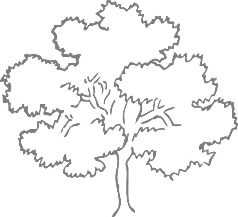 Tree clipart number. Popularity contest paint by