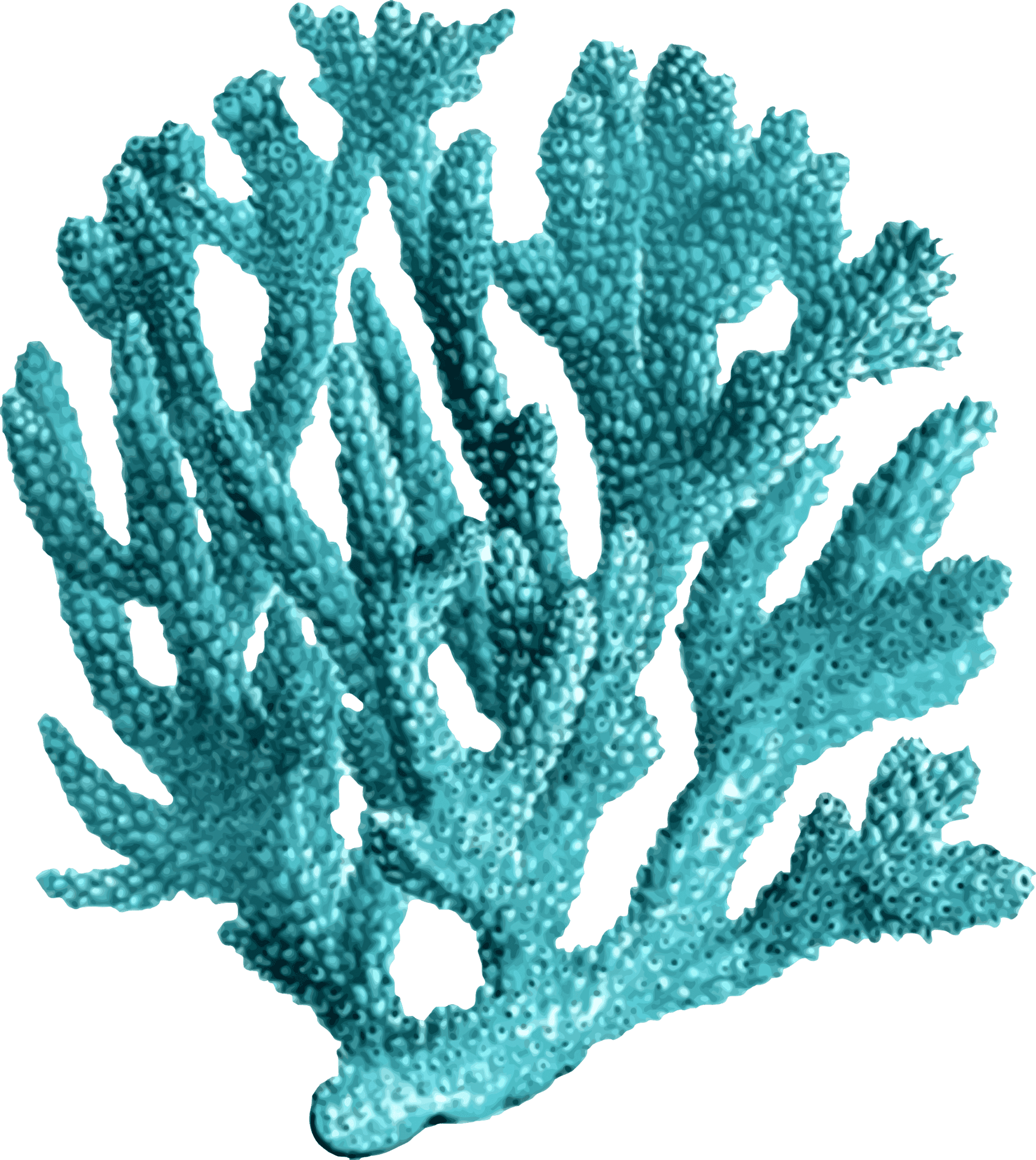 Clipart ocean coral reef ecosystem. World summit from february