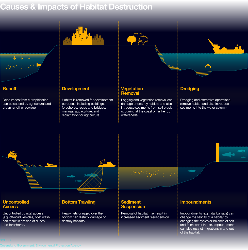 Fish clipart water pollution. Image result for habitat
