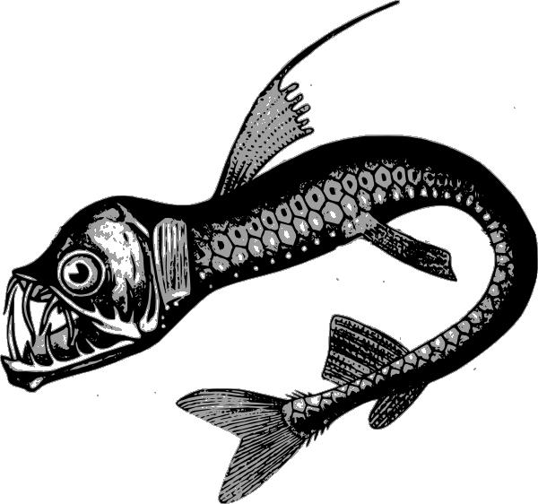 Ocean sea animal