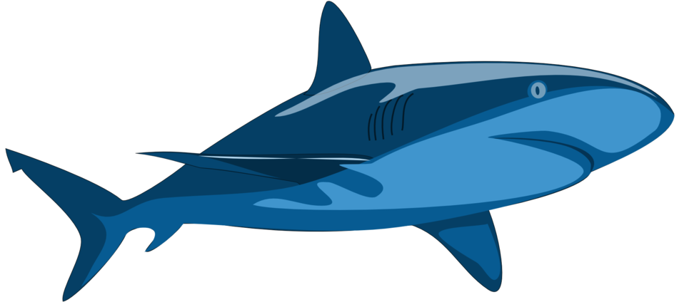 clipart shark jaw