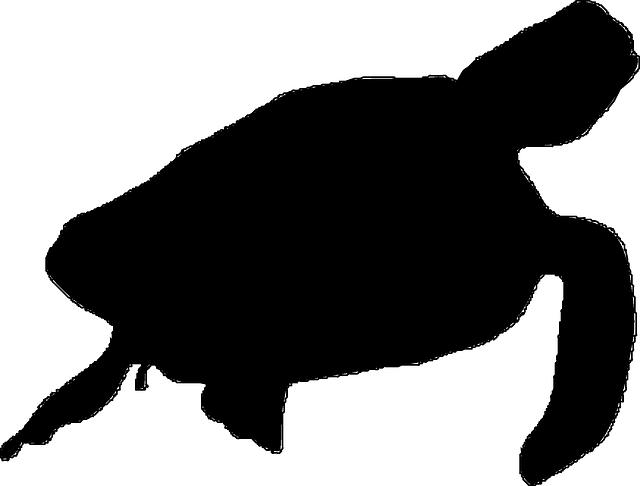 Clipart turtle silhouette. Sea panda free images