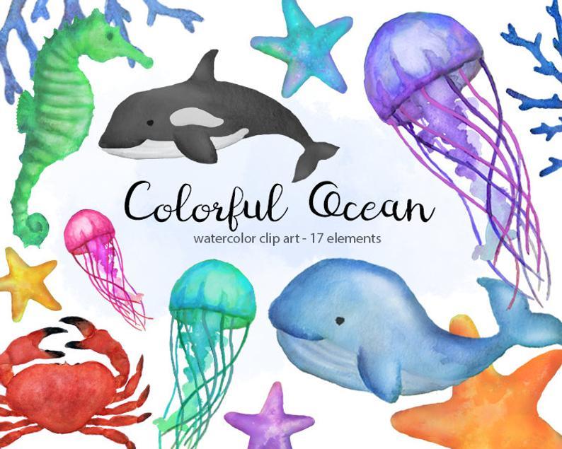Clipart ocean watercolor. Colorful sea clip art