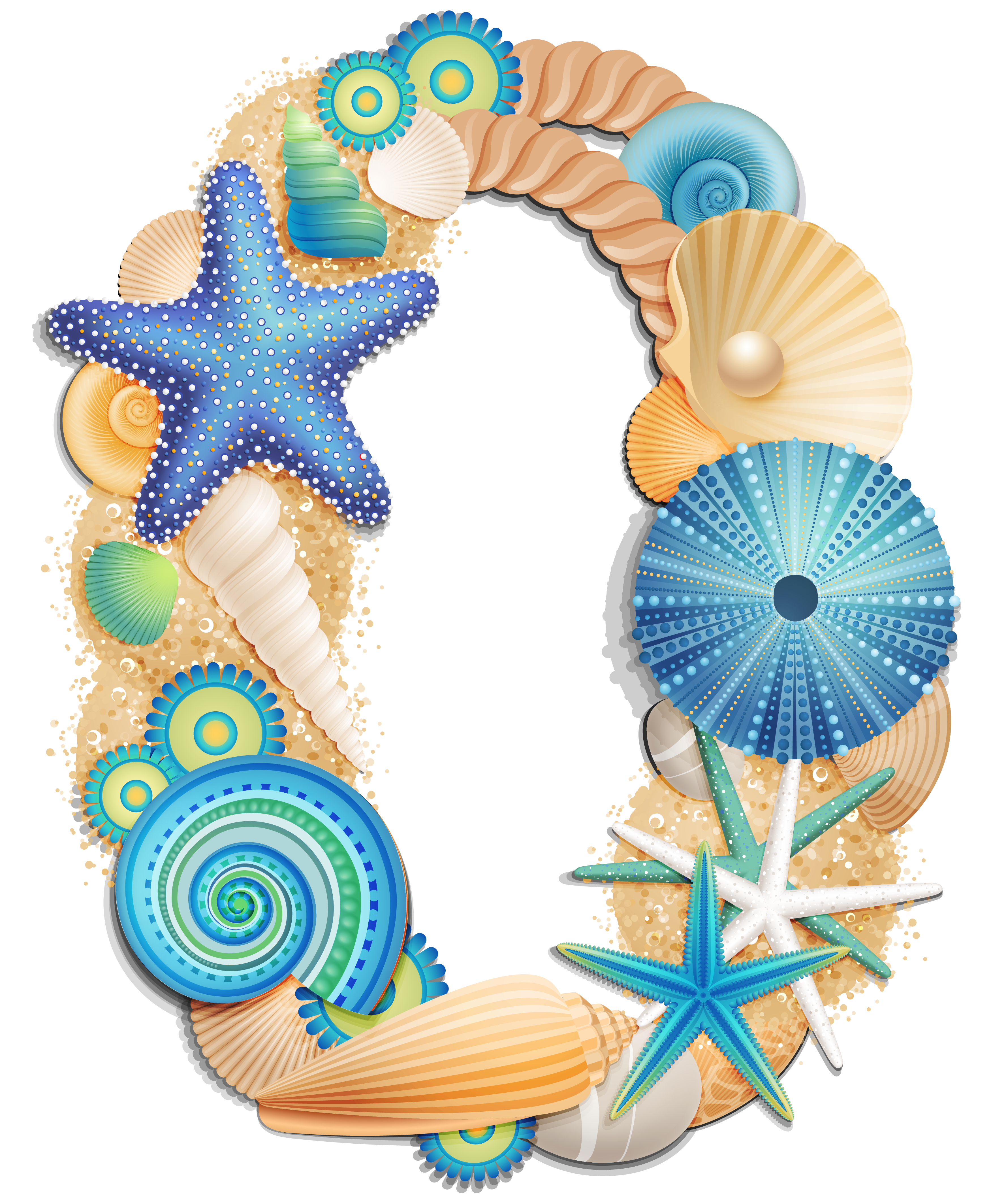 Pin by on pinterest. Shell clipart teal