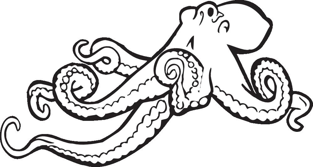 Clip art panda free. Clipart octopus border