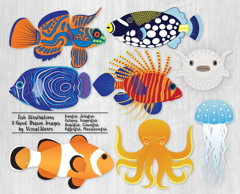 Tropical salt water fishes. Clipart octopus fish