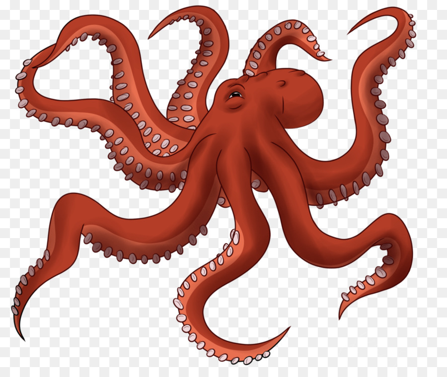 Cartoon drawing graphics . Clipart octopus giant octopus