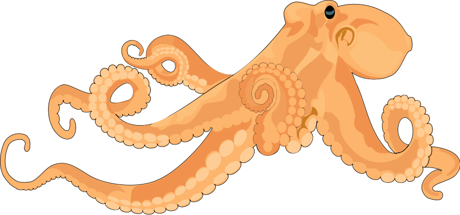 collection of transparent. Girly clipart octopus
