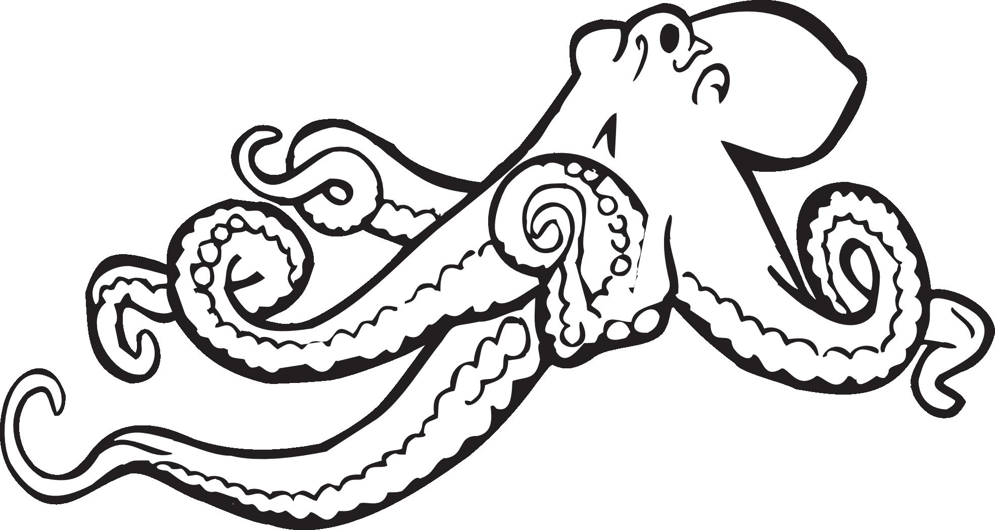 Clipart octopus kraken. Cool black and white