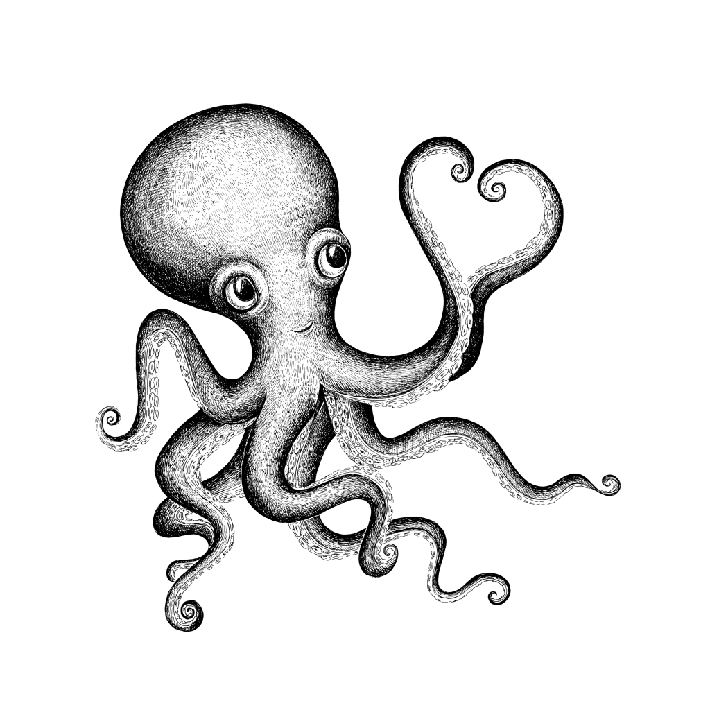 Clipart octopus marine animal. Valentine s day drawing
