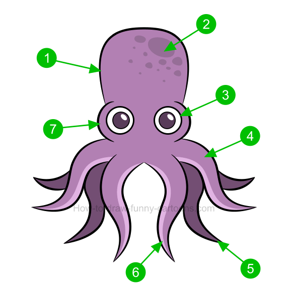 How to draw an. Clipart octopus octopus drawing