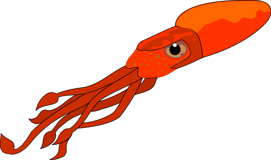 Octopus pencil and in. Squid clipart simple