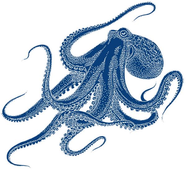 clipart octopus watercolor