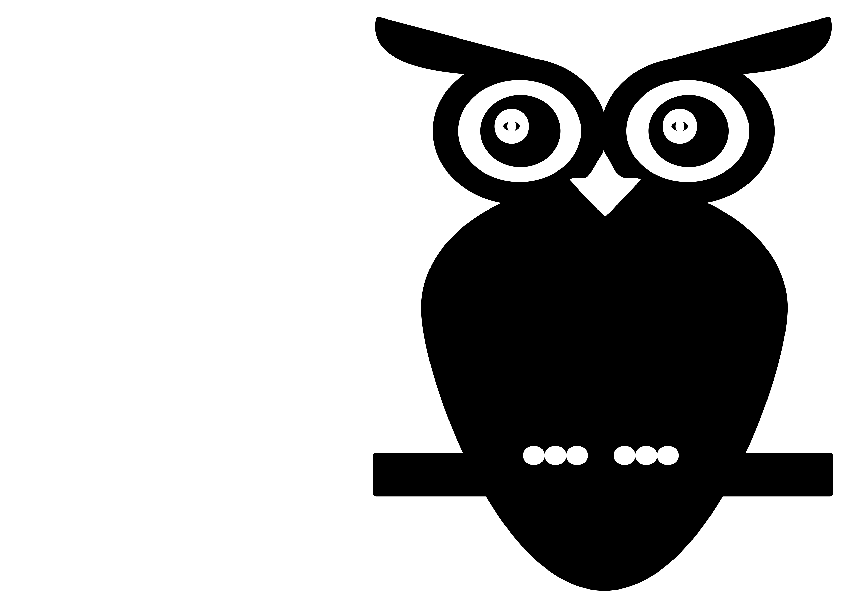 Clipart owl black and white. Big image png