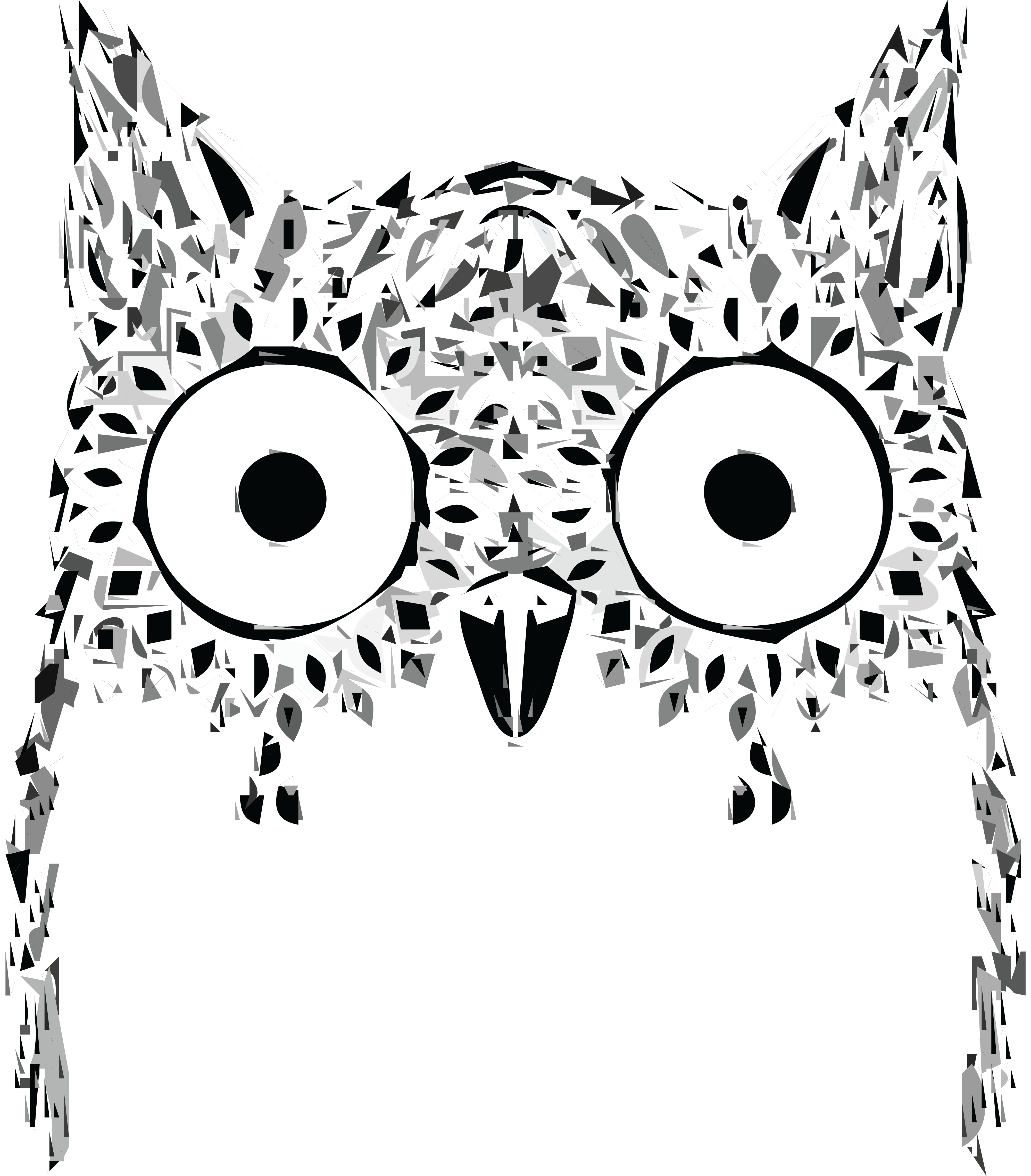 Face drawing at getdrawings. Feather clipart owl