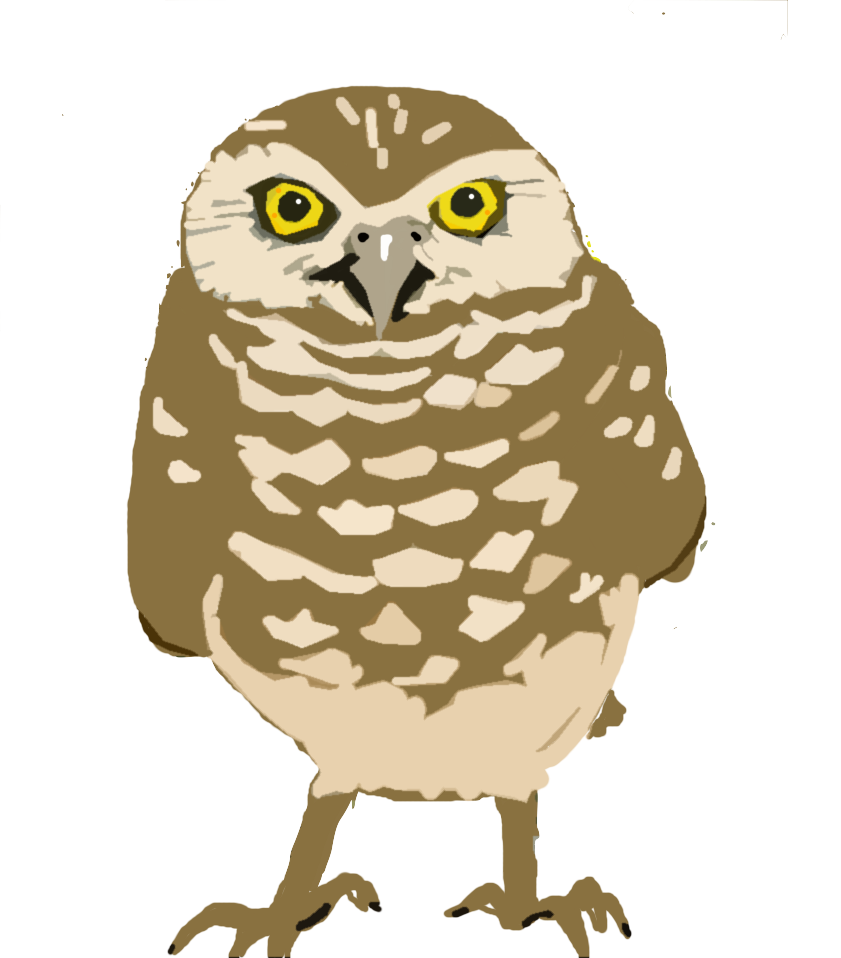 O is for lizbrownlee. December clipart owl