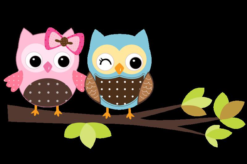 Owl doctor