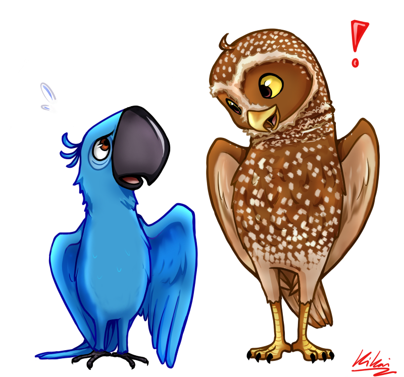 Birds of a by. Feather clipart owl