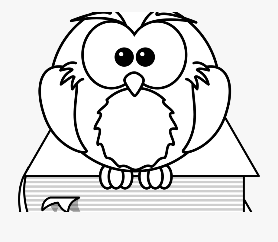 Porcupine coloring pages free. Clipart owl high resolution