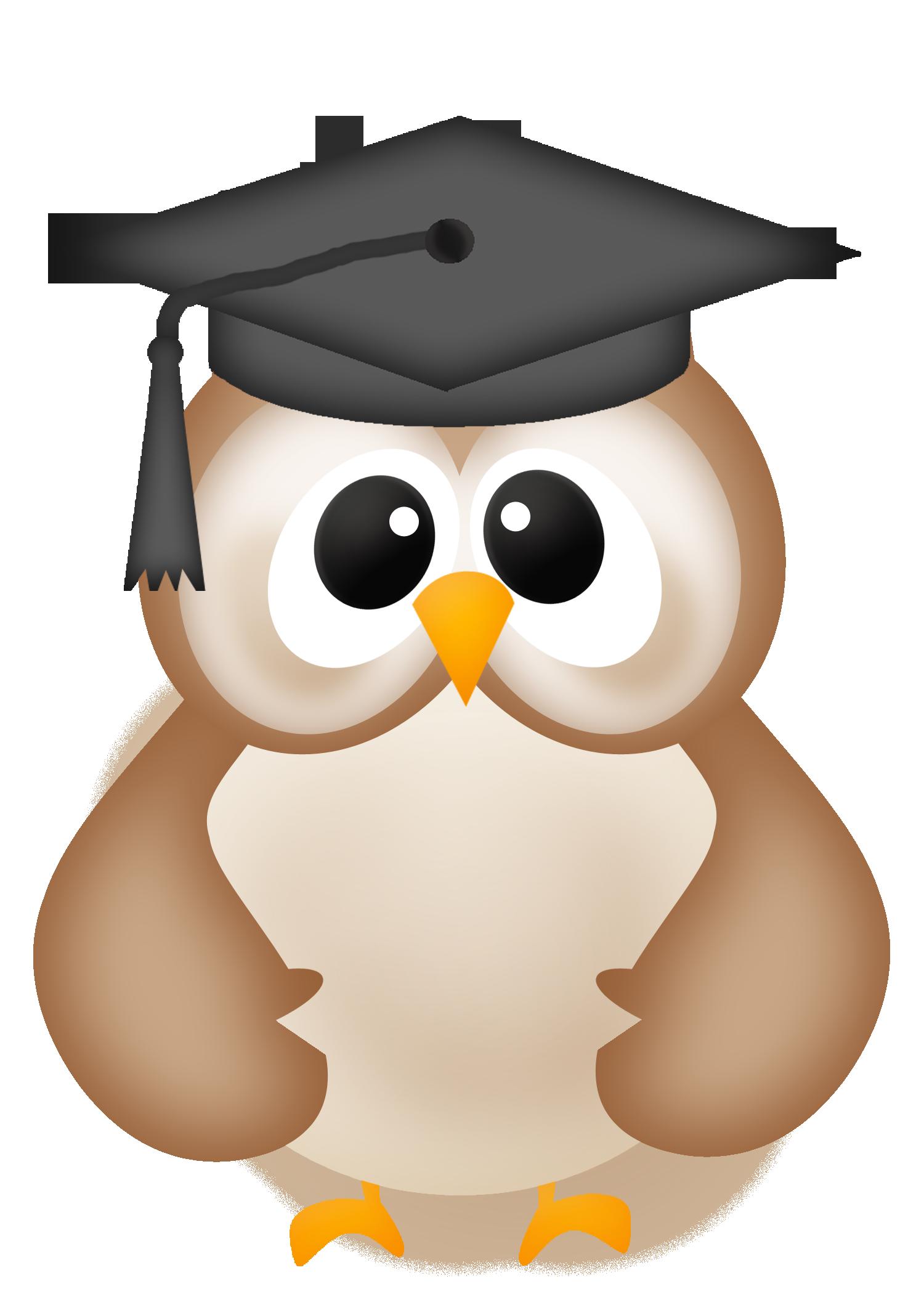 Owl graduation panda free. Diploma clipart convocation