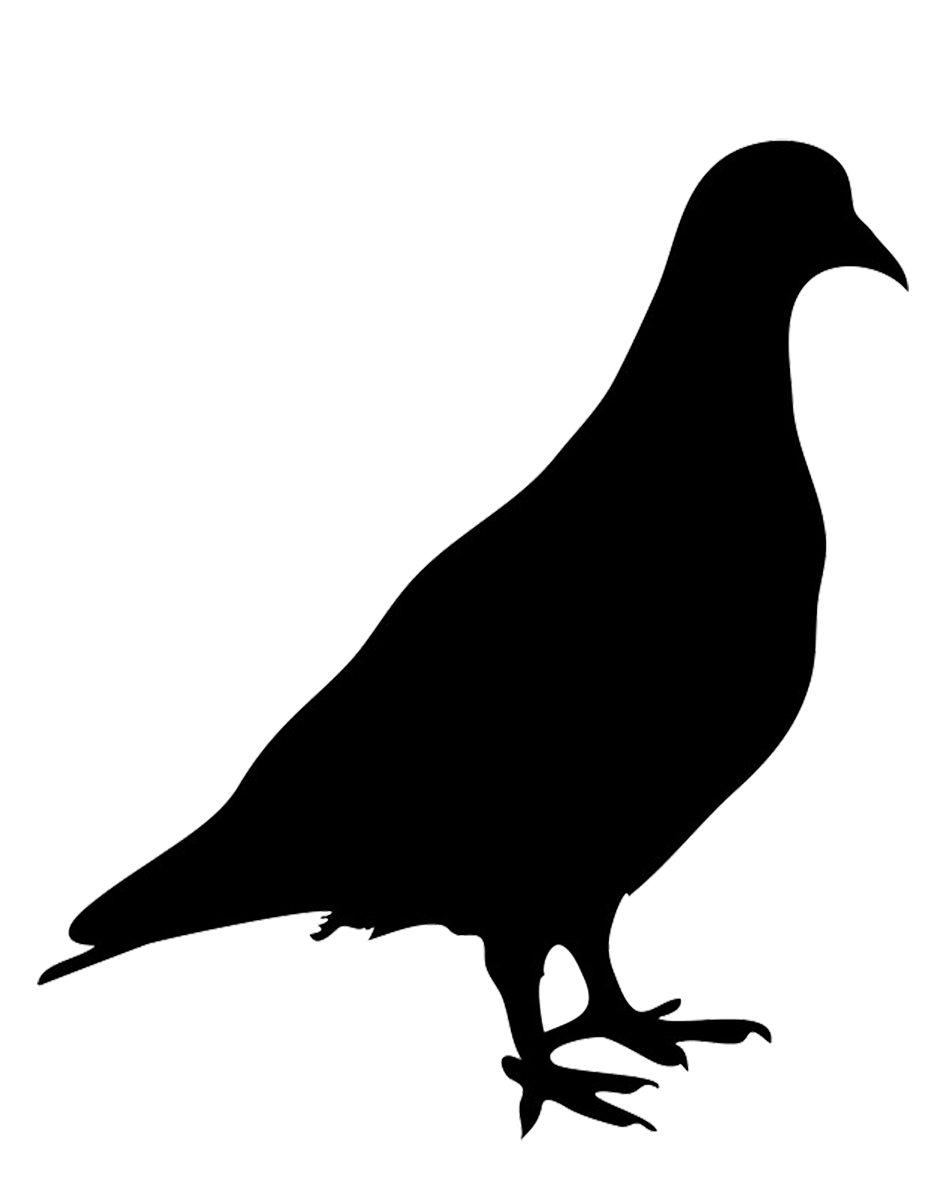 Goat clipart ram. Bird silhouettes silhouette of