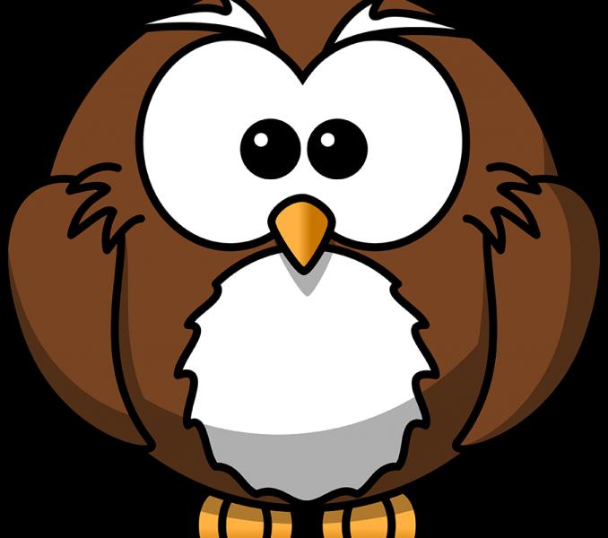 Drawing cartoon at getdrawings. Clipart owl sketch
