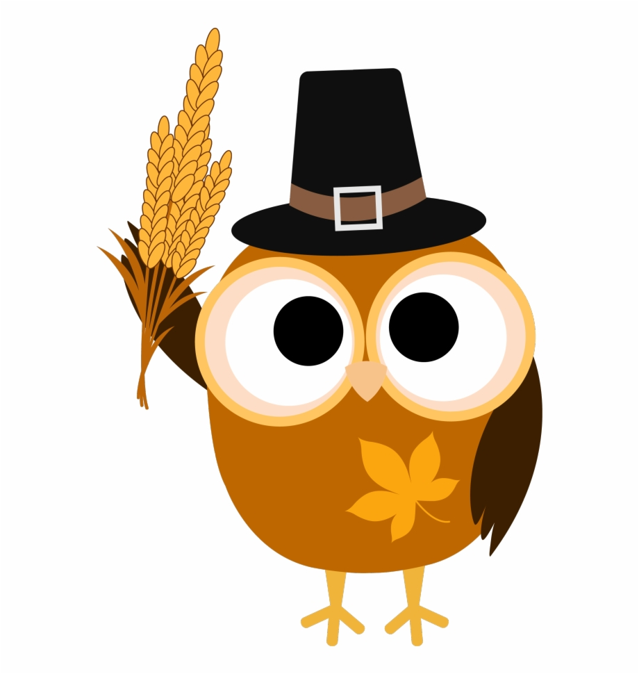 Turkey png image clip. Owls clipart thanksgiving