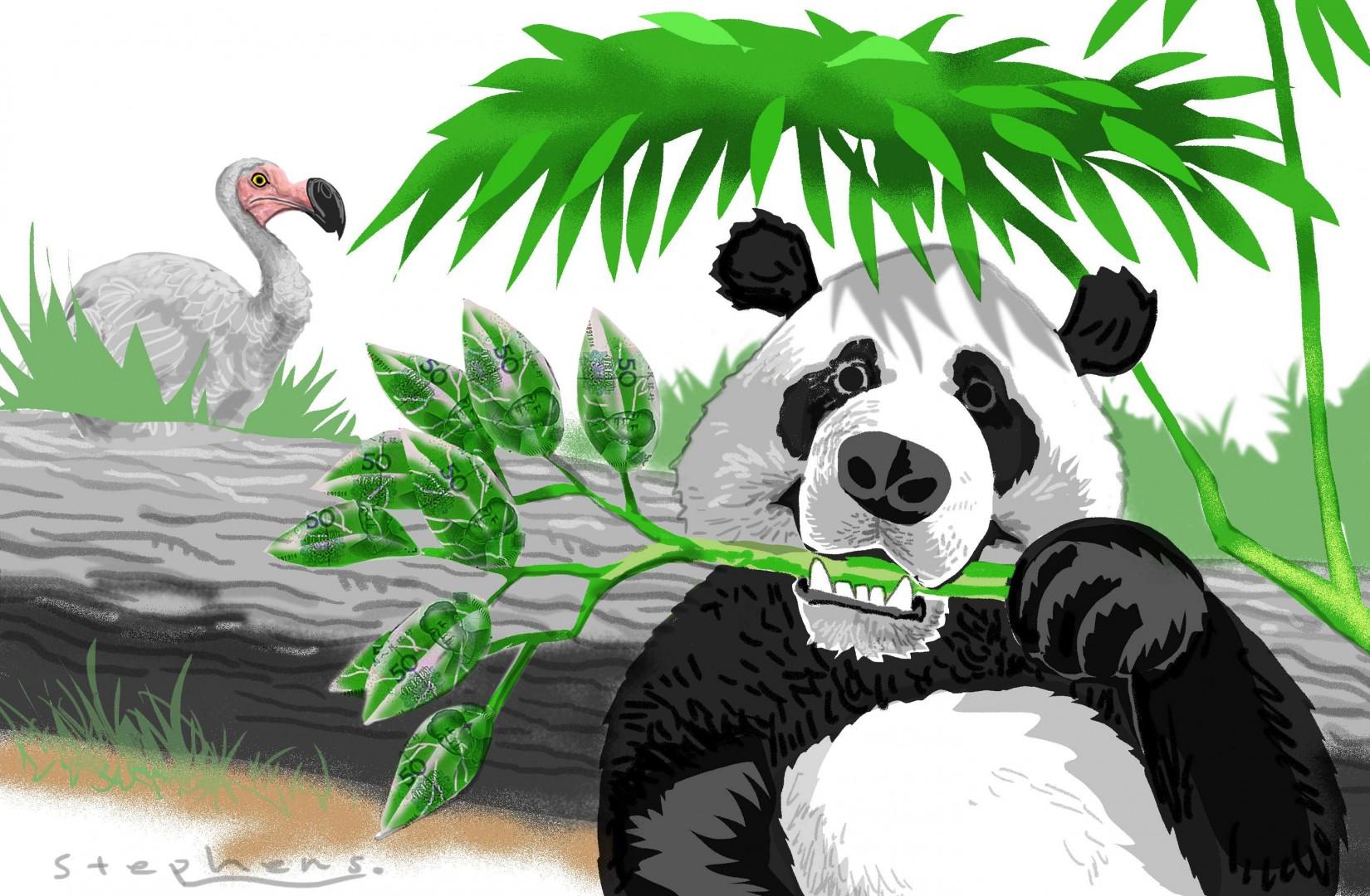 Clipart panda panda habitat. China s thriving pandas