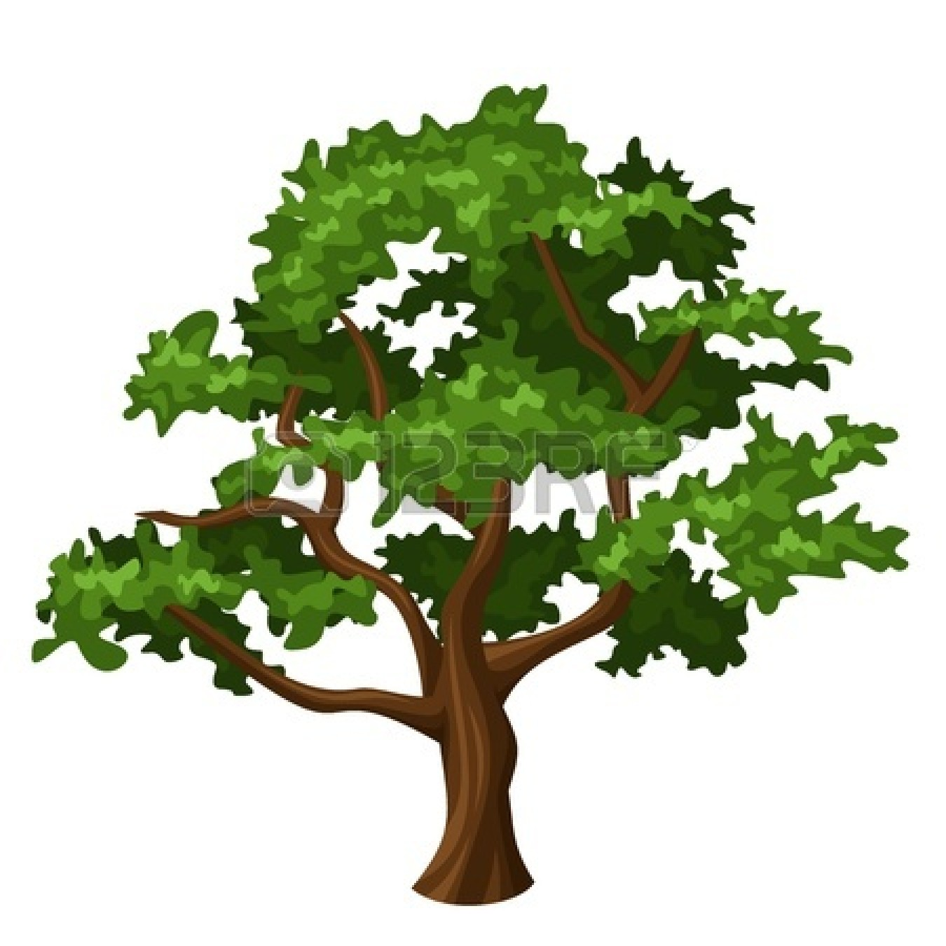 Tree clipart oak. Trees panda free images