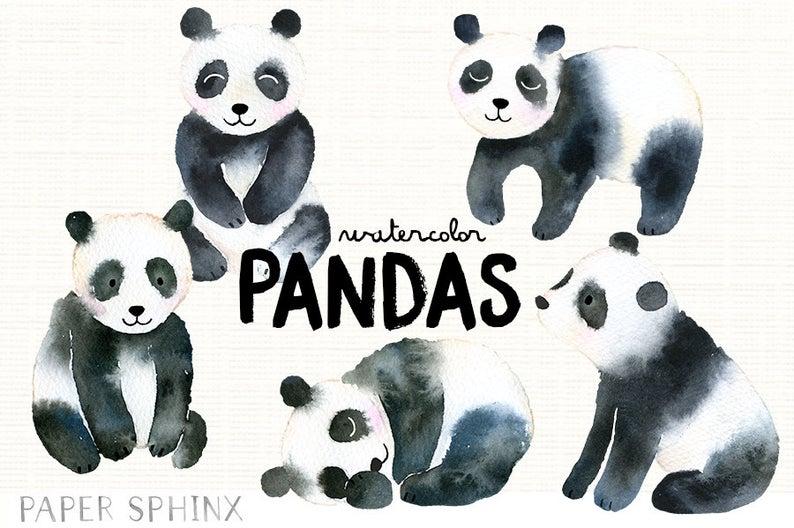 Bear family illustrated nursery. Clipart panda watercolor