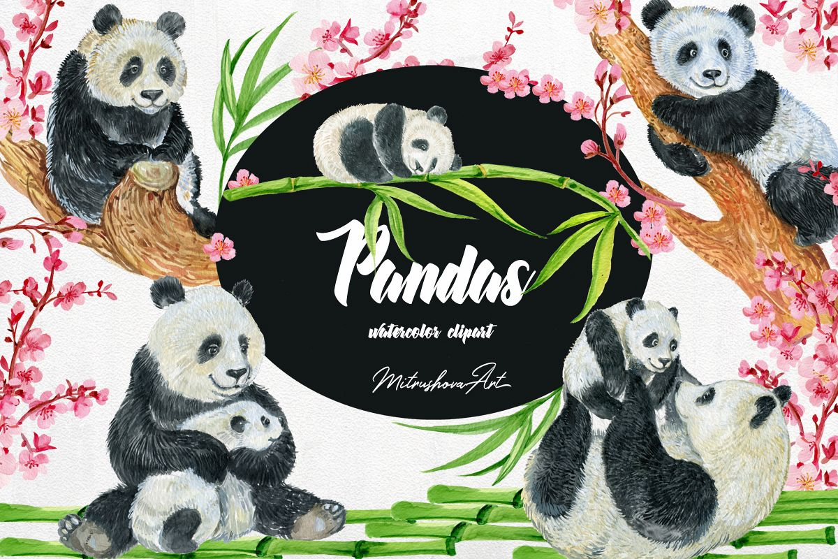 Clipart panda watercolor.