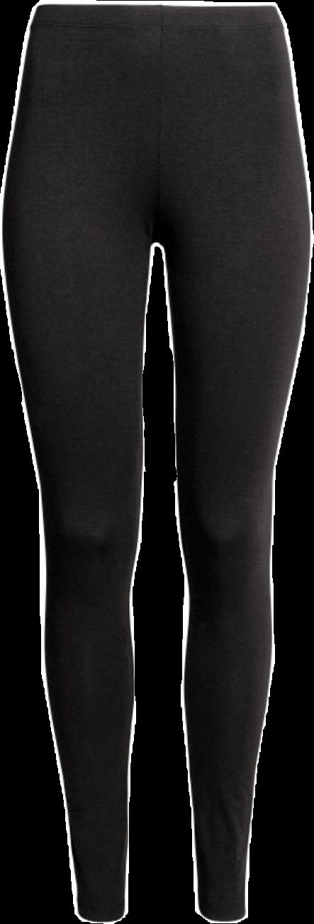 Pants Clipart Leggings Pants Leggings Transparent Free For Download On Webstockreview 2020