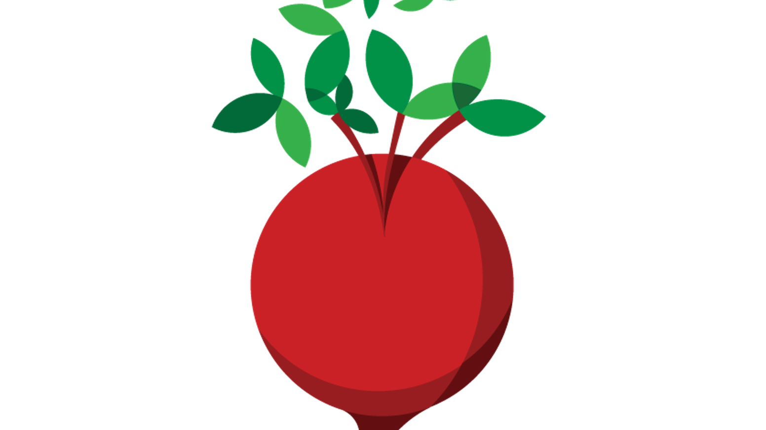 crops clipart radish plant