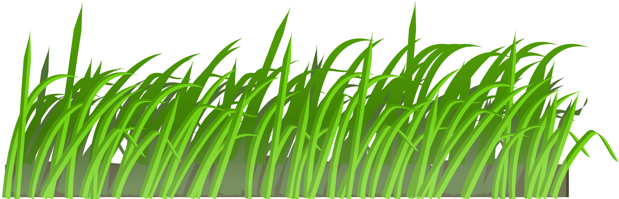 Green eight isolated stock. Clipart park grass
