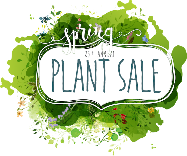 Plant sale members bay. Clipart turtle spring