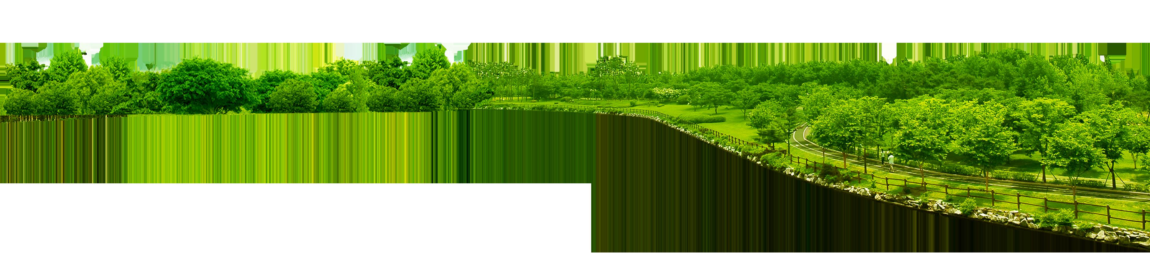 Clipart park natural environment. Green tree clip art