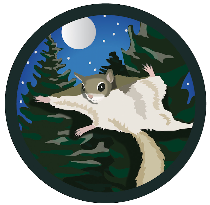 Hike clipart state park. Timberdoodle studio sticker for