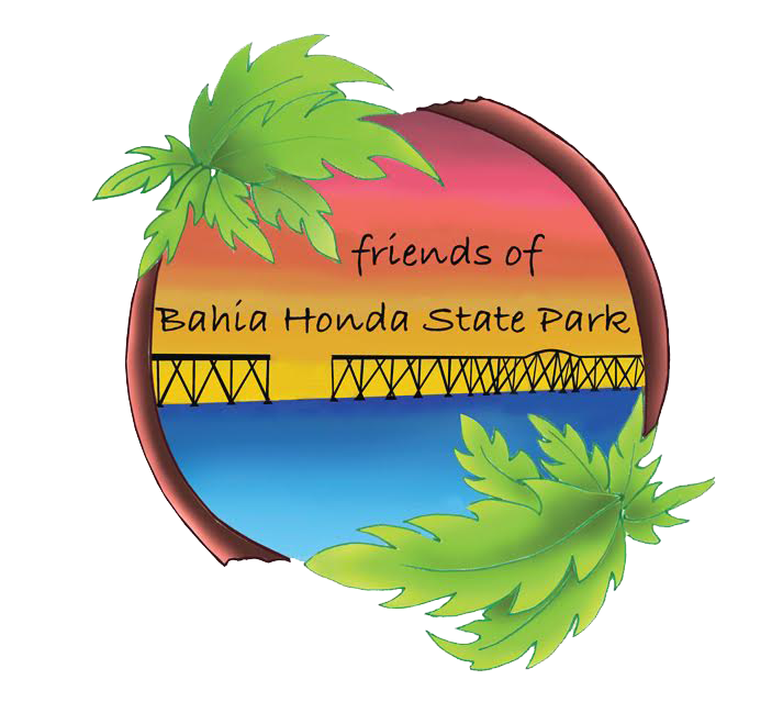 Friends of bahia honda. Friendship clipart world unity