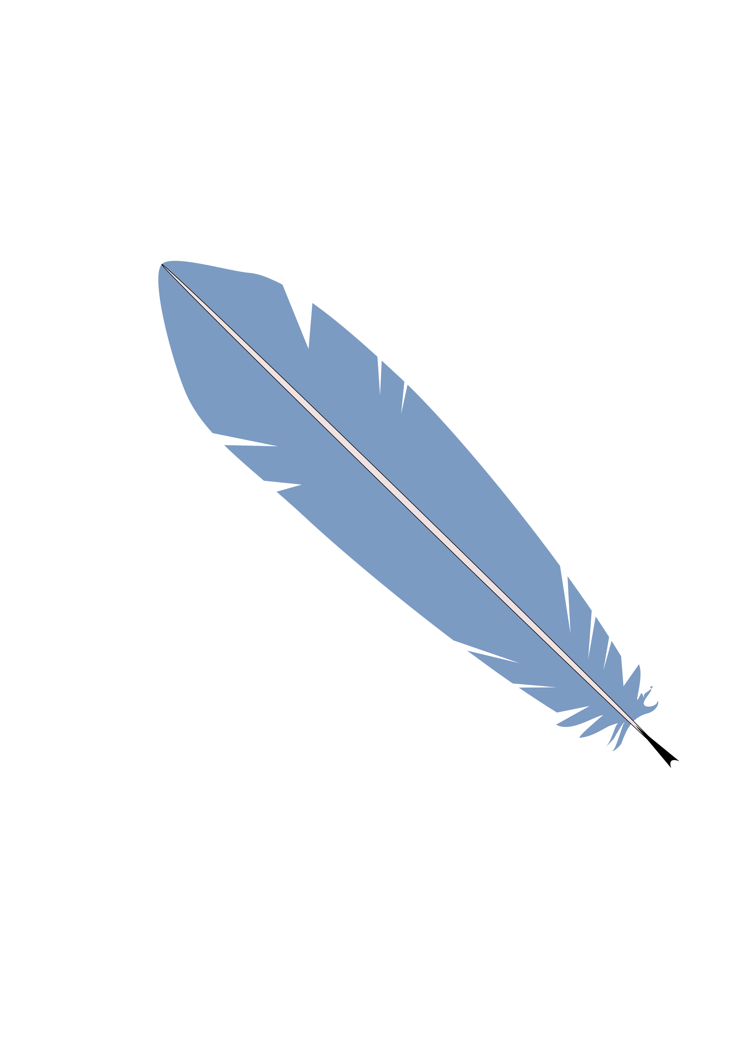 Feather. Feathers clipart svg