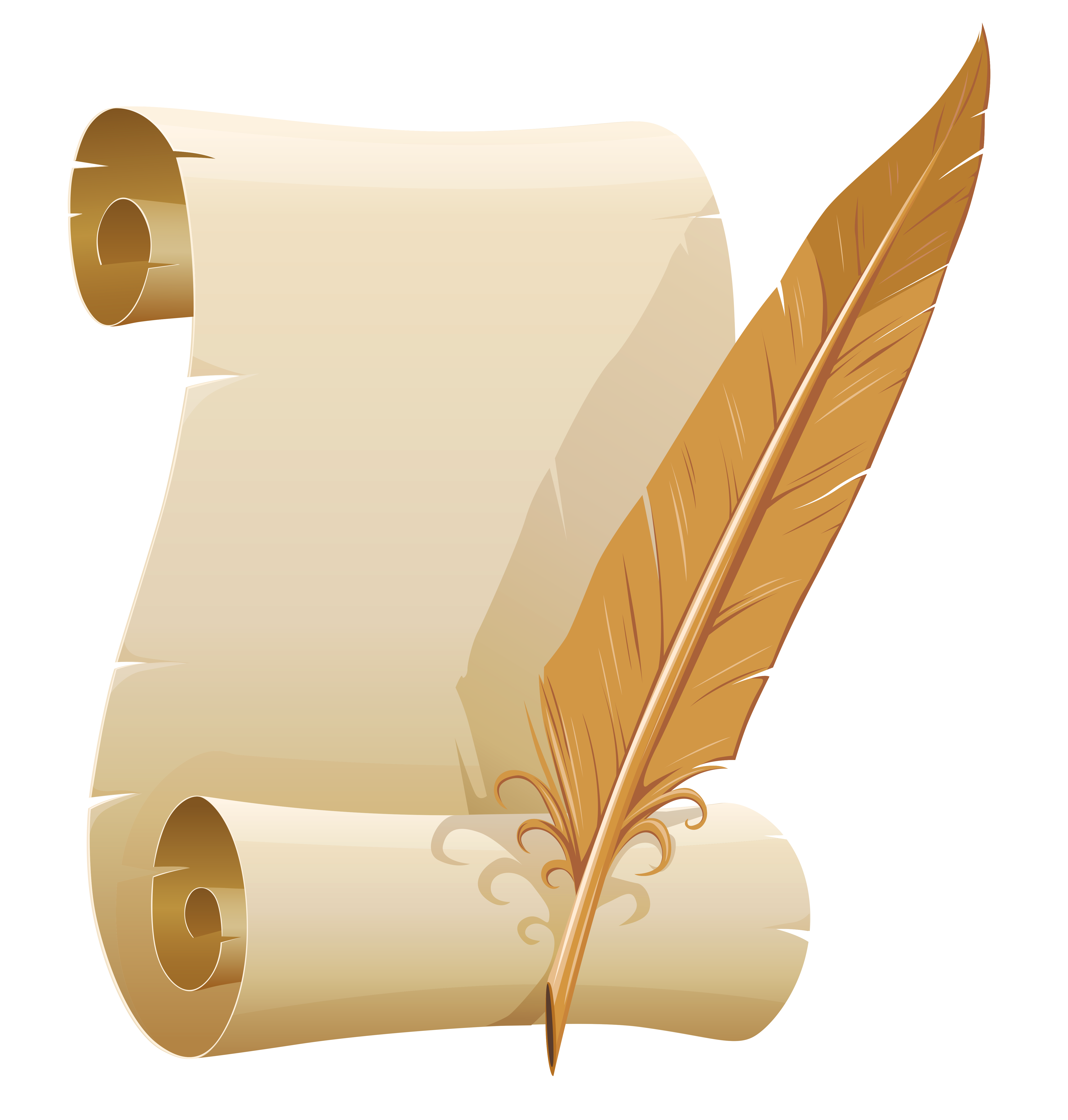 Scrolled and quill pen. Feather clipart paper