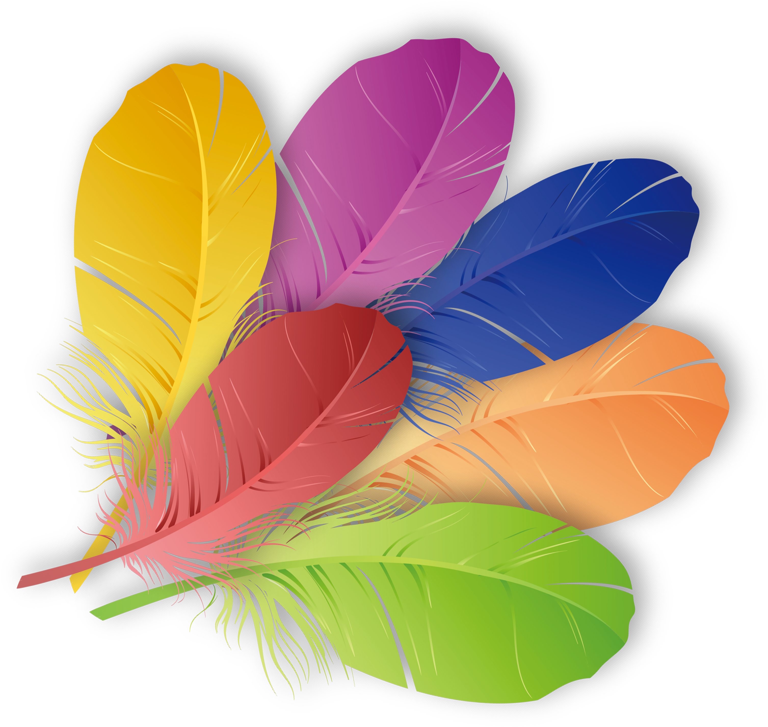 Feather clipart orange feather. The floating color colored