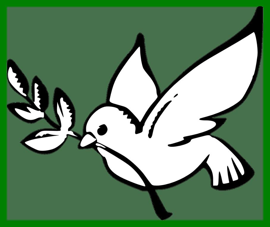 Best peace dove coloring. Clipart pencil printable