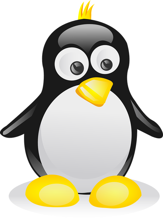 Clipart penguin computer. Pictures bdfjade x px