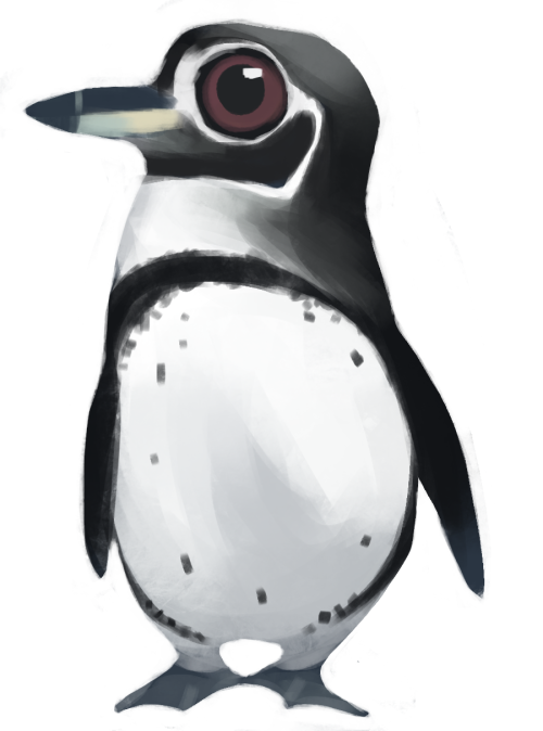 Penguins tumblr spheniscus mendiculus. Clipart penquin galapagos penguin