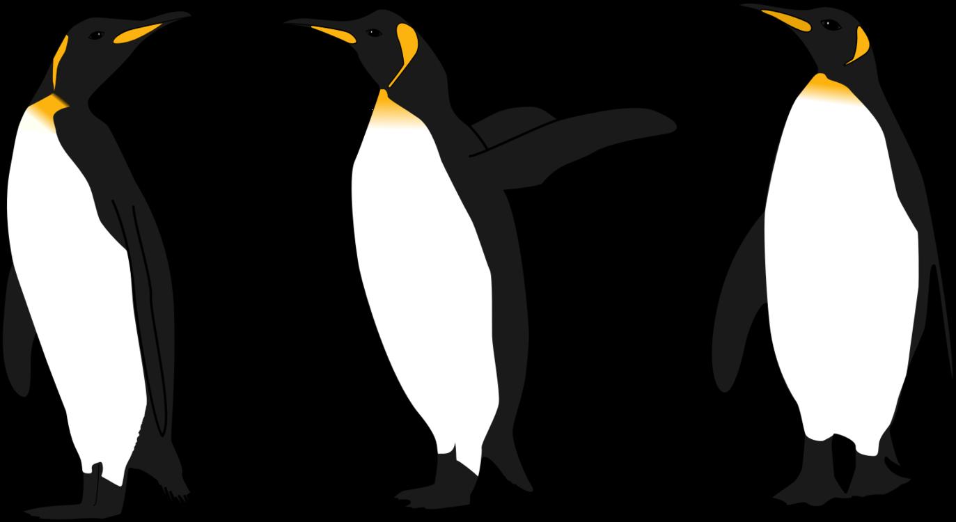 Clipart penguin gentoo penguin. Hd emperor bird king