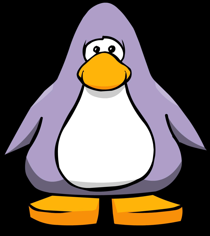 Clipart penquin colored. Lavender club penguin wiki
