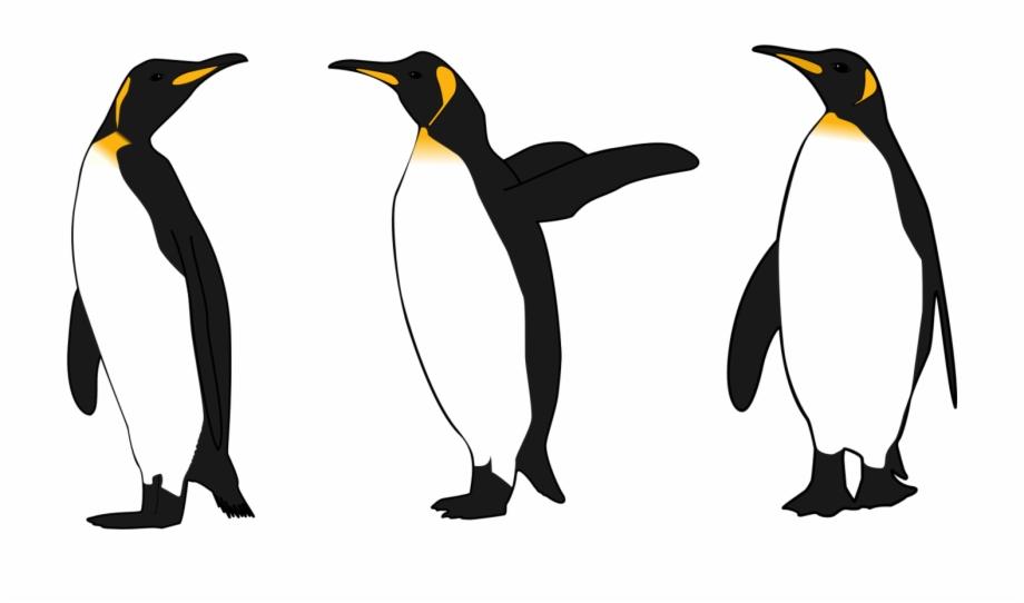 Clipart penguin king penguin. Emperor bird gentoo