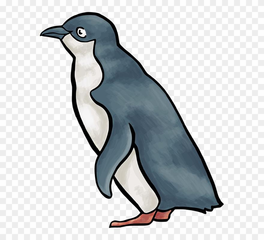 Blue . Clipart penguin little penguin