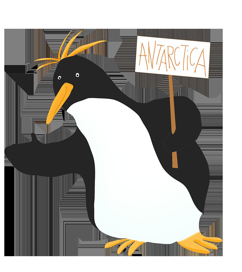 Clipart penquin colored. Macaroni penguin
